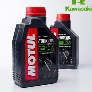 FORK EXPERT MED 10W,1.0L